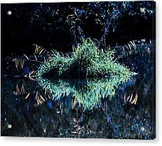 Floating Island Acrylic Print by Leif Sohlman
