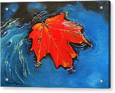Floating Maple Reference Acrylic Print