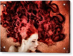 Floating Red Acrylic Print by Gun Legler