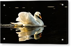 Floats On Peaceful Water Acrylic Print by Rose-Maries Pictures