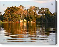 Acrylic Print featuring the photograph Flooded Amazon With Houses by Nareeta Martin