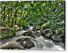 Acrylic Print featuring the photograph Flooded Small Stream  by Dan Friend