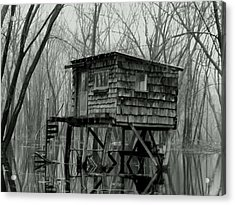 Swamp Witch Acrylic Print by Wild Thing