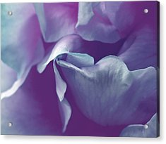 Abstract Blue Purple Green White Flowers Art Work Photography Acrylic Print by Artecco Fine Art Photography