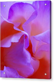 Abstract Red White Orange Pink Flowers Art Work Photography Acrylic Print