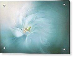 Floral Ballet Acrylic Print