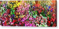 Floral Basket 1  2.4 To 1 Aspect Ratio Acrylic Print