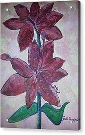 Floral Beauty Acrylic Print by Joetta Beauford