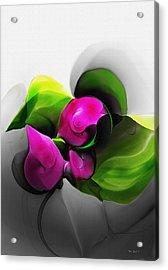 Floral Expression 111213 Acrylic Print by David Lane