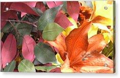 Floral Fall Acrylic Print