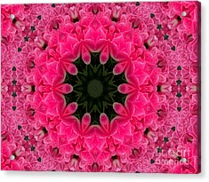 Floral Fantasy - 24 Acrylic Print
