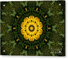 Floral Fantasy - 34 Acrylic Print