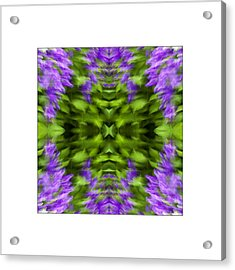 Floral Focus Acrylic Print by Don Powers
