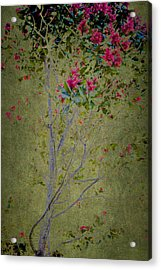 Acrylic Print featuring the photograph Floral Interlace by Linde Townsend