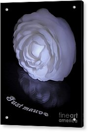Floral Reflections 4 - Camellia Acrylic Print by Kaye Menner