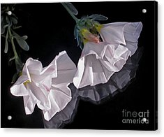 Floral Reflections Acrylic Print by Kaye Menner