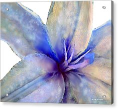Floral Series - Lily Acrylic Print by Moon Stumpp