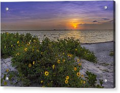 Floral Shore Acrylic Print by Marvin Spates
