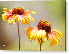 Floral Sunshine Acrylic Print