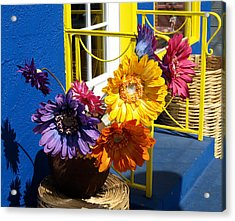 Flores Colores Acrylic Print by Gia Marie Houck