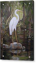 Florida Bird Acrylic Print
