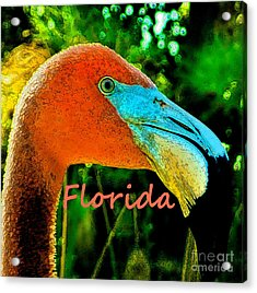 Florida Flamingo Acrylic Print by Brigitte Emme