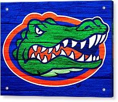 Florida Gators Barn Door Acrylic Print by Dan Sproul