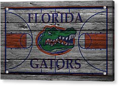 Florida Gators Acrylic Print by Joe Hamilton