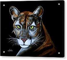 Florida Panther Jeremiah Acrylic Print by Adele Moscaritolo