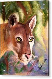 Florida Panther Acrylic Print by Renee Michelle Wenker