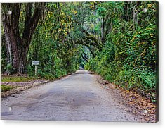 Florida Road Acrylic Print by Tom Culver