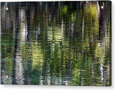 Florida Silver Springs River Acrylic Print