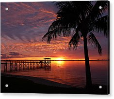 Acrylic Print featuring the photograph Florida Sunset by Elaine Franklin