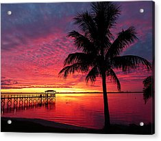 Acrylic Print featuring the photograph Florida Sunset II by Elaine Franklin
