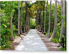 Florida Walkway Acrylic Print by Carey Chen