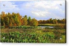 Florida Wetlands August Acrylic Print