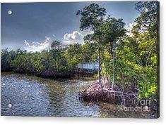 Florida's Dawn Acrylic Print by Ines Bolasini