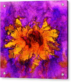 Floro - 45b Acrylic Print by Variance Collections
