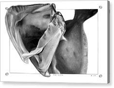 Flounder - Into The Maw Acrylic Print