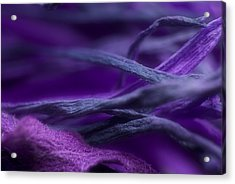 Acrylic Print featuring the photograph Flow by WB Johnston