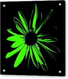 Acrylic Print featuring the digital art Flower 12 by Maggy Marsh