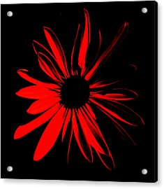 Acrylic Print featuring the digital art Flower 2 by Maggy Marsh