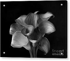 Flower #367 Acrylic Print