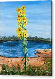 Flower Amidst Drought Acrylic Print
