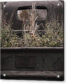 Acrylic Print featuring the photograph Flower Bed - Nature And Machine by Steven Milner