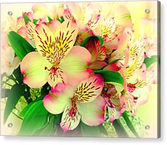 Flower Bouquet In Pink And Yellow Acrylic Print by Bishopston Fine Art