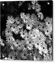 Acrylic Print featuring the photograph Flower Bouquet by Silke Brubaker