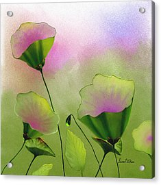 Flower Bowls Acrylic Print
