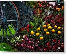 Flower Cart Acrylic Print by David Blank