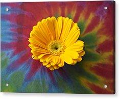 Flower Child Acrylic Print by Christi Kraft